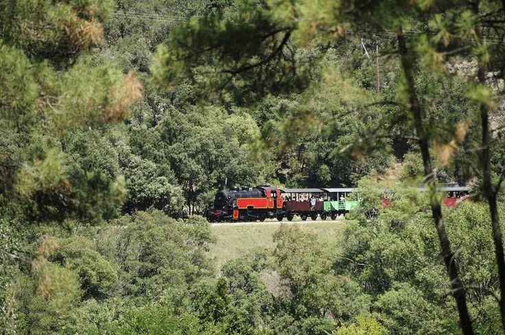 Le petit train à vapeur, un incontournable