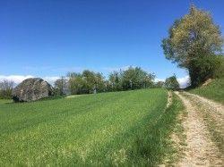 [Haute-Savoie] Excenevex Messery Chens Loisin Ballaison Sciez Depuis Excenevex, on alterne routes et pistes agricoles jusqu'au bois de Messery, qu'on va traverser jusqu'à Chens Sur Léman pour ensuite traverser les bois jusqu'à Loisin.  De Loisin on attaque l'ascension de la colline de Ballaison par la route et/ou les vignes.  Enfin on traverse la crête de la colline pour ensuite redescendre sur Sciez et revenir sur Excenevex.