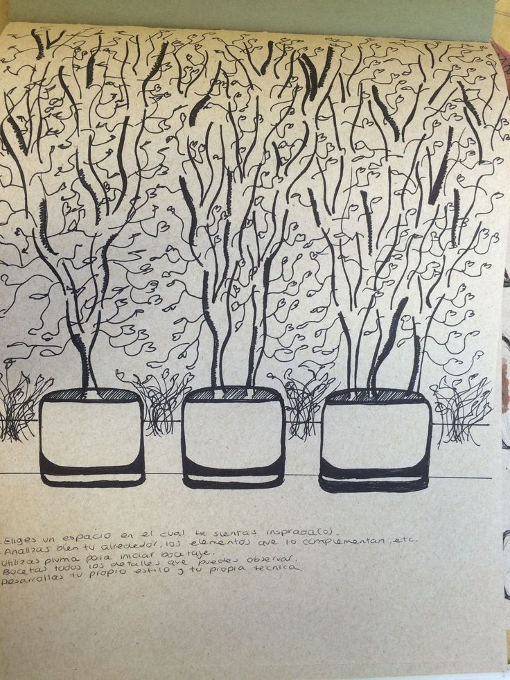 María Lazo. Sketch. Macetas del ITESO. (Sharpie)