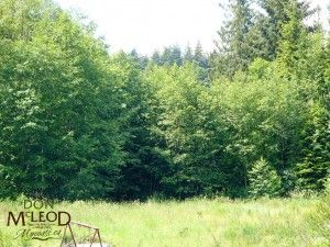 Lot 1 Yukon Avenue Powell River BC – Rare In Town 3.25 Acres – Rare in-town 3.25 level acreage situated near east end of Cranberry Lake. A panhandle driveway access acreage beside 5379 Yukon Ave. Some cleared area, some filled area where topsoil was removed and balance is in natural forest, with rich topsoil for gardening, blueberry farm, etc. Lots of privacy, sewer and water on main road.
