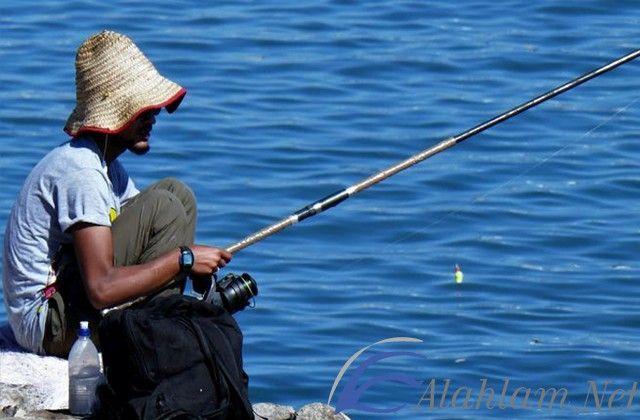 تفسير رؤية سنارة صيد في المنام حلم سنارة الصيد للعزباء حلم سنارة الصيد للمتزوجة حلم سنارة صيد Fish Sports