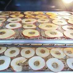 dried apples in the oven