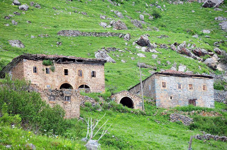 GÜDAK - Taşköprü-Santa Kamplı Foto Safari  (16-17 Haziran 2012) | by Recep Ergin