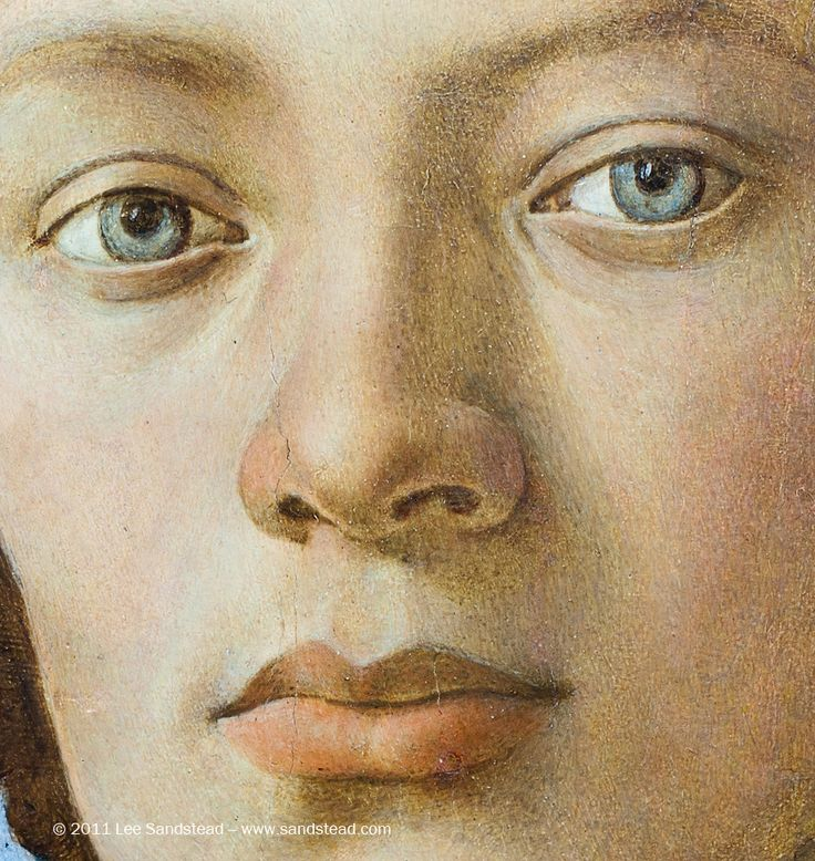 Filippino Lippi | Filippino Lippi (Italian, 1457-1504), Portrait of a Youth (1485), Oil ... notice the lovely asymmetry between the eyes and lips. Irises not even oval.