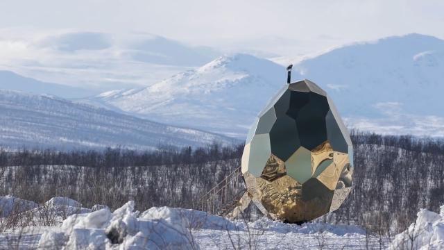 Peculiar golden egg structure hides surprising interiors