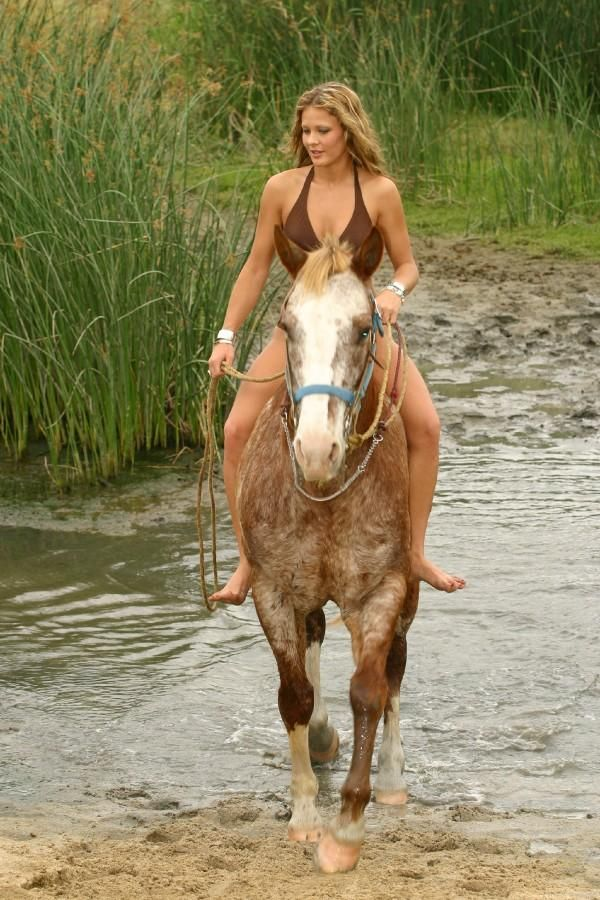 Summer time ride to the waterfall. I went horseback riding ...