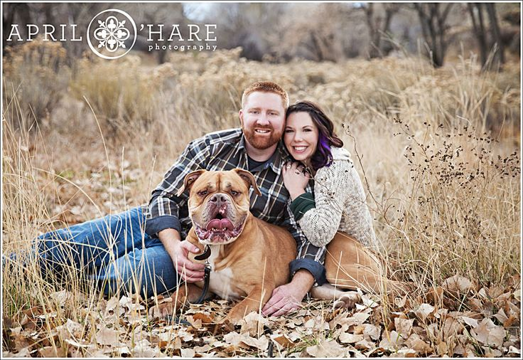 An Autumn engagement photo of a couple sitting with their huge French Mastiff dog at Devil's Backbone in Loveland Colorado