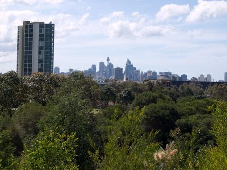 sydney park skyline