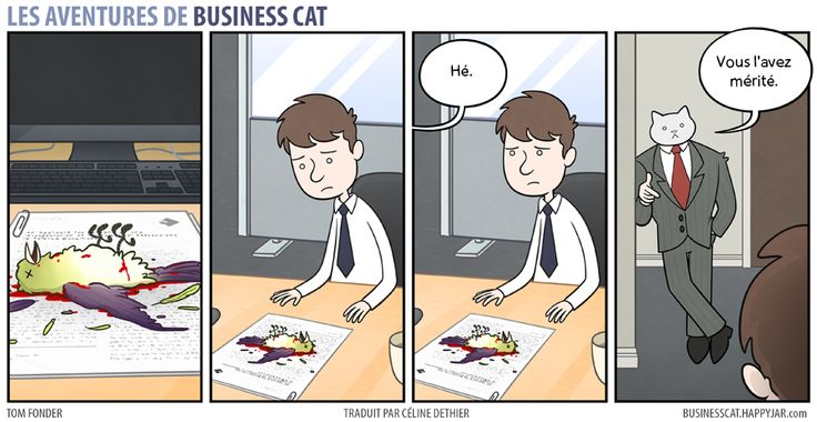 business-cat-4
