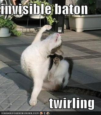 Don't love cats...but a baton twirling one....now, that's cool : )
