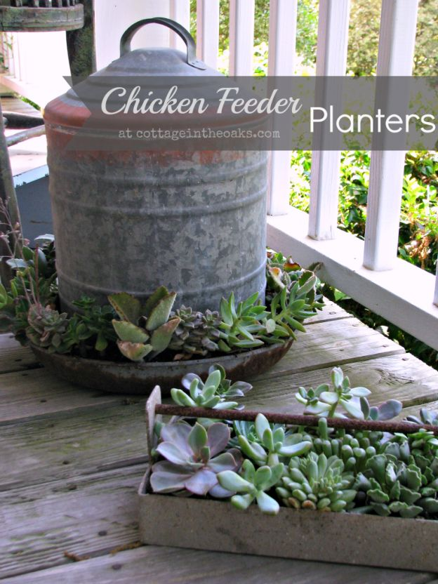Chicken Feeder Planters