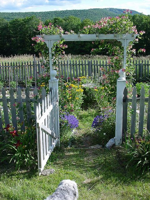 dream fence and gate