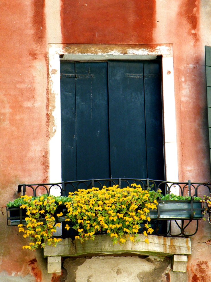 A beautiful flowerbox on a typical Venetian window (Photography by Anne Costello): Venetian Window, Window Photography, Window Boxes