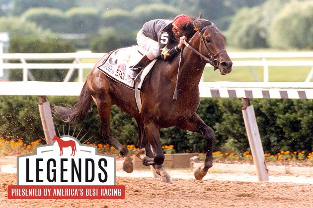 Legends: Risen Star, Pride of Louisiana - He raced for New Orleans, becoming the pride and joy of anyone who called the bayous home and making Louisiana the capital of the horse racing industry for a brief yet unforgettable period of time.
