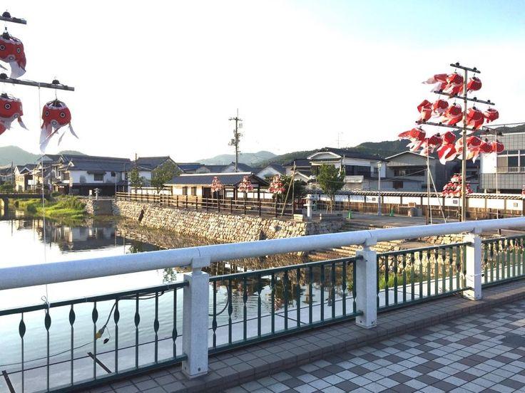 柳井の熱い夏が近づいて来ています 金魚ちょうちん祭 #柳井 #金魚ちょうちん