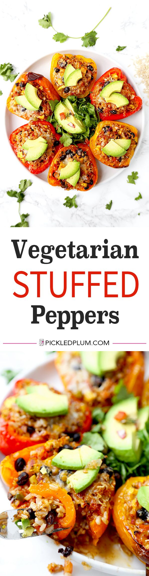 Vegetarian Stuffed Peppers - So colorful and healthy! Munch on these savory vegetarian stuffed peppers and watch your wrinkles disappear! Serve them as a side or a main and top them with avocado, sour cream and hot sauce. They are filling, delicious and guilt-free. Recipe, vegetarian, gluten free, stuffed peppers | pickledplum.com