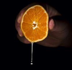 Più frutta nelle bevande Approvato l'emendamento che innalza la percentuale minima di frutta nelle bevande al 20%