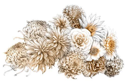 illustration nuage de fleurs - Florence Gendre