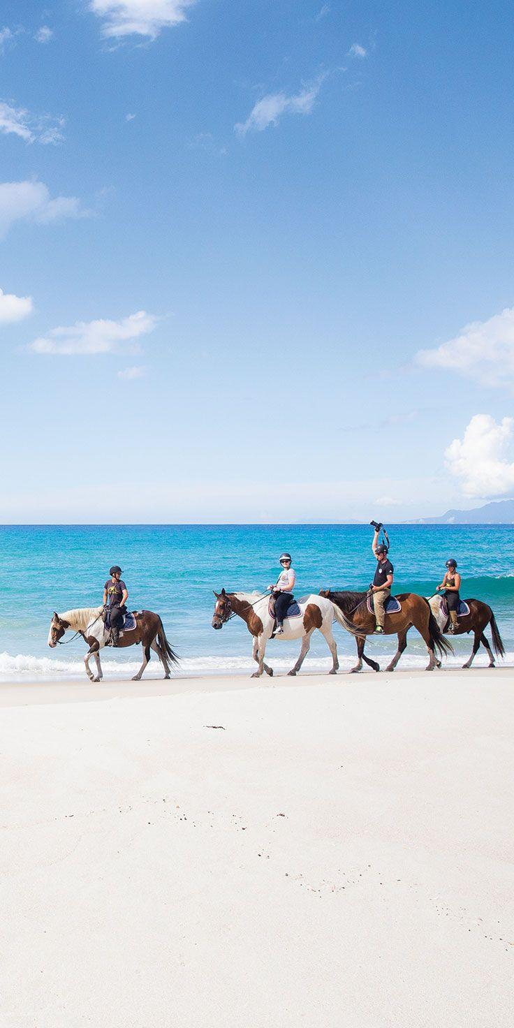 Horse riding along Pakiri Beach, Auckland - by Cindy Chen