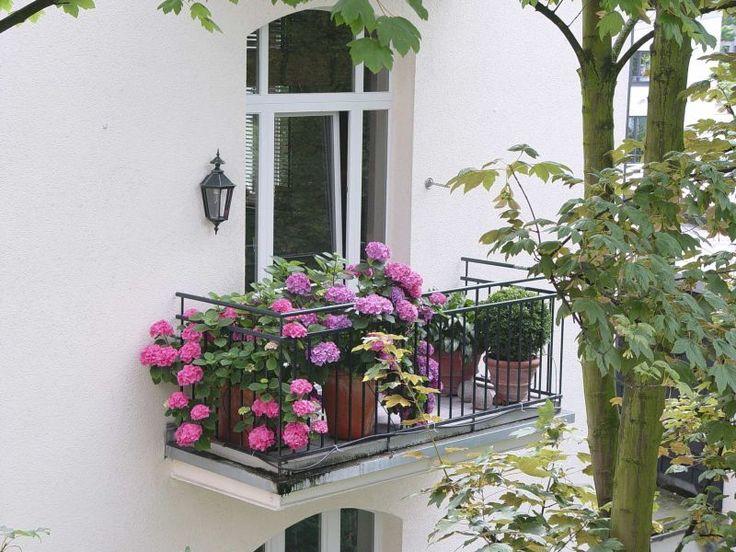 Das Beste Für Den Balkon Im Schatten