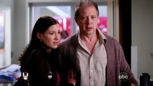 Grey's Anatomy - Chyler Leigh (Dr. Lexie Grey) , Jeff Perry (Thatcher Grey)
