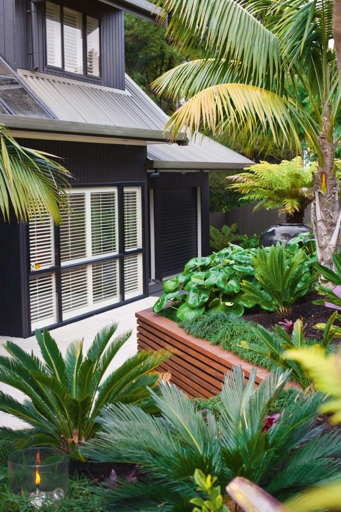 Black house w/ tropical garden...