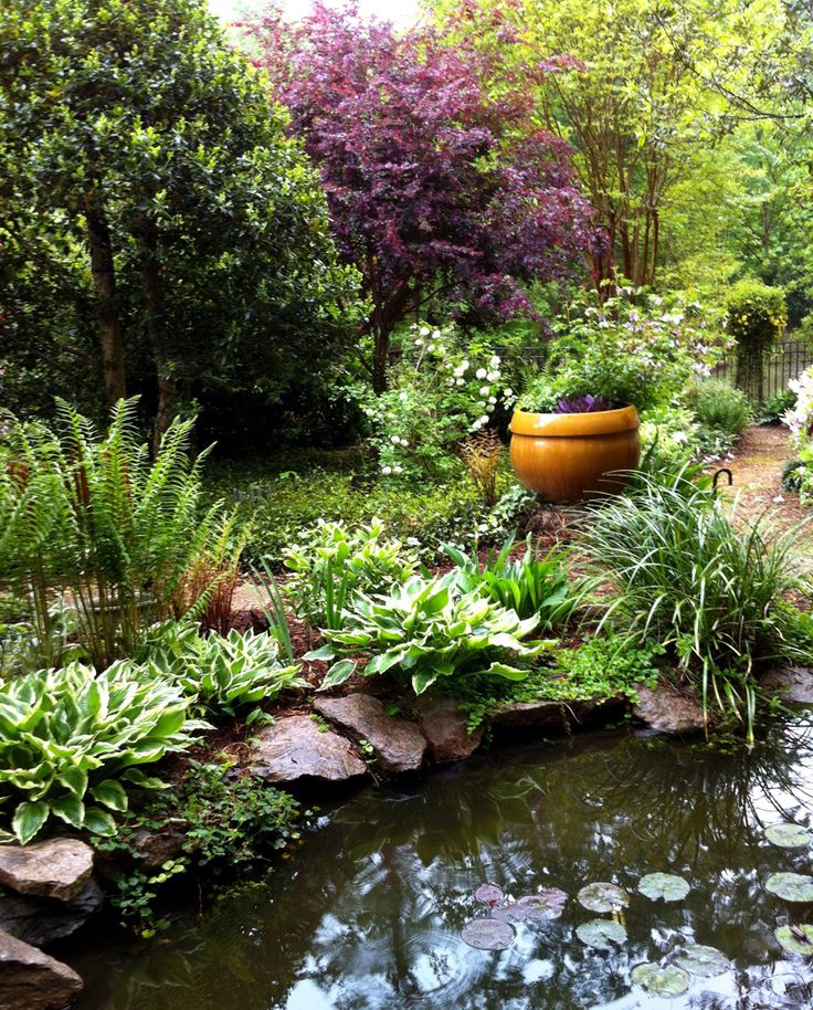 25 best images about backyard pond on pinterest backyard for Landscaping around a small pond