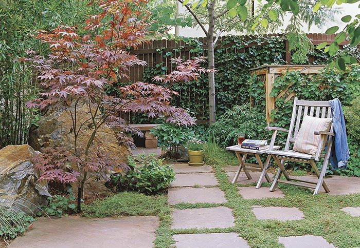 small japanese garden trees - Google Search