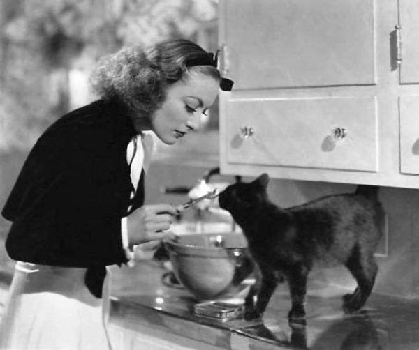 Joan Crawford <3s kitty