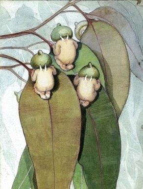 bush babies -- Gumnut Babies, May Gibbs