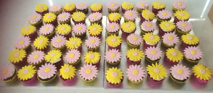 #daisycupcakes