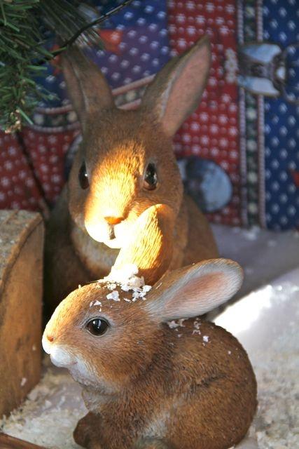 Christmas creatures....Ahhh..
