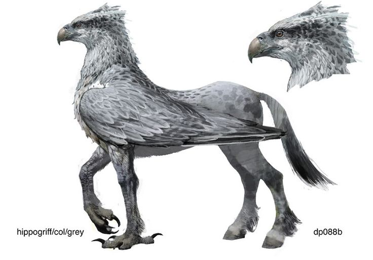 Hippogriff - a beast with the head and upper body of an eagle and the lower body of a horse.