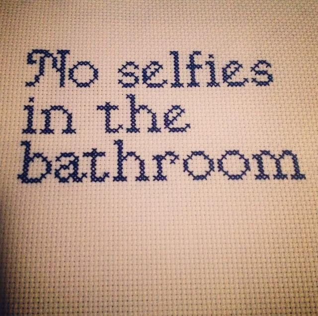 Subversive Cross Stitch - No selfies in the bathroom  #thirddaughterrestlessdaughter