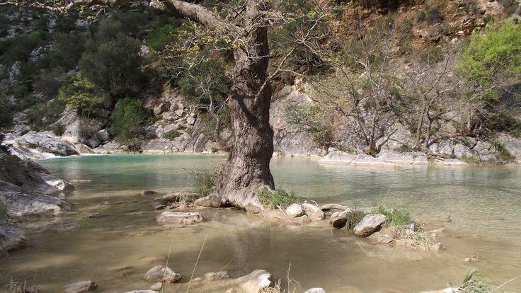 Tanos river near Astros village Arcadia Peloponnese