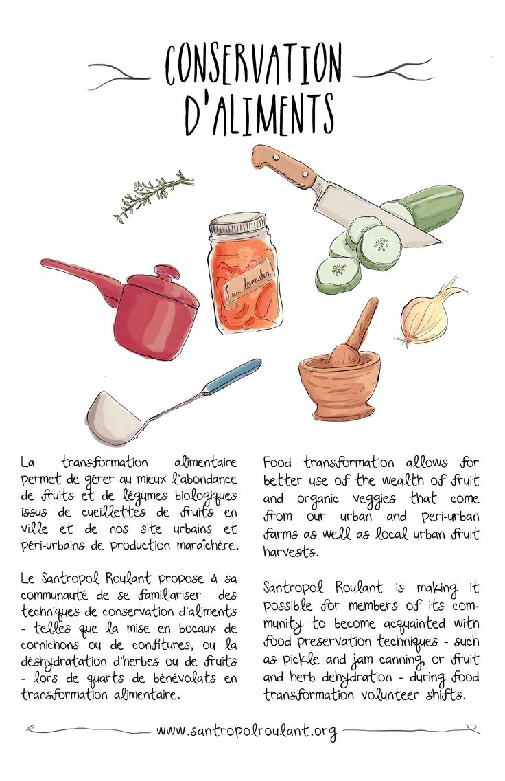 Illustration for Santropol Roulant's food preservation and canning initiatives.