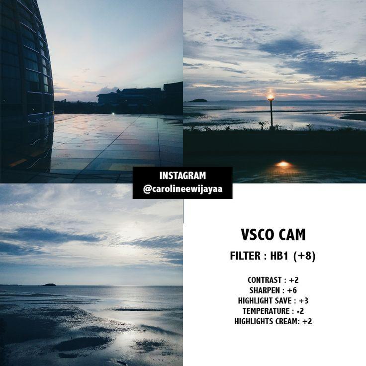 VSCO CAM filters / presets for Instagram Feed!  My Instagram : @carolineewijayaa