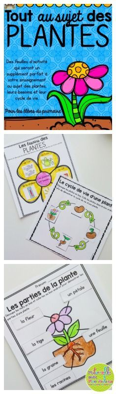 Apprenons tout au sujet des plantes (FRENCH Let's learn all about plants). Over 40 pages of French worksheets, booklets, and activities to supplement your science curriculum!