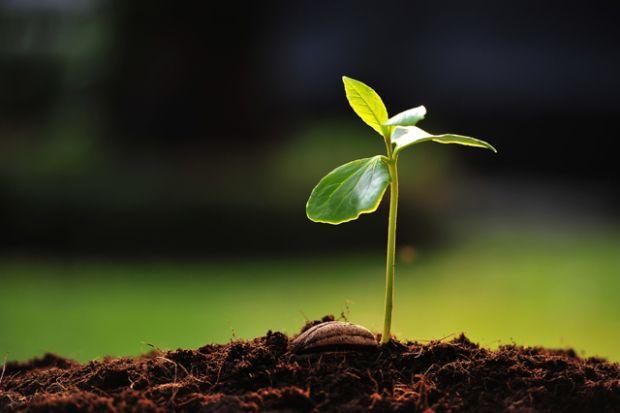 Disciplina della biologia che studia le forme             di vita del mondo vegetale: NUOVE SCOPERTE – Le piante comunicano utilizzando ...