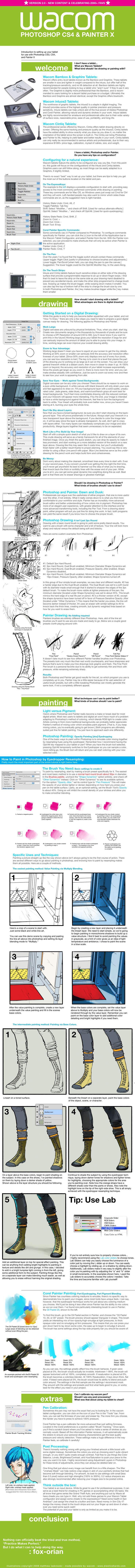 http://fc06.deviantart.net/fs40/f/2009/055/5/4/Wacom_Photoshop_Painter___v2_0_by_fox_orian.jpg