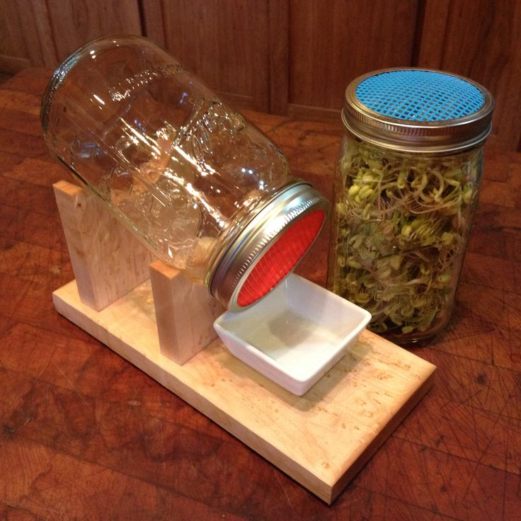 Sprouting Kit includes custom made wood stand, mason jar