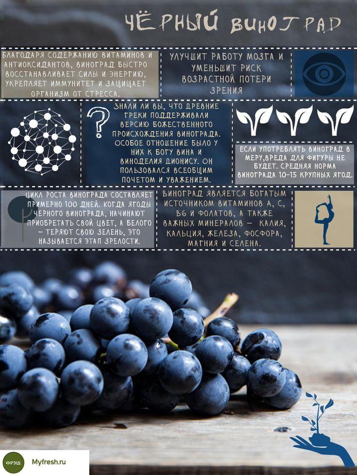 ПОЛЕЗНАЯ ИНФОГРАФИКА: ВИНОГРАД ИЗАБЕЛЛА  На днях, в нашем ассортименте появился очень полезный продукт - виноград сорта Изабелла. Мы подготовили для вас инфографику о его благотворных свойствах.  http://myfresh.ru/ovoschi-frukty/frukty/vinograd-izabella  #myfresh_ru   #fresh_russia #natural #фермерская #фермерский   #натуральный #органический #органическая #инфографика   #интересно #факт #факты #facts
