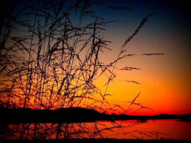Sweet sunset. Photo by Tanja Kerr, Courtenay, BC.