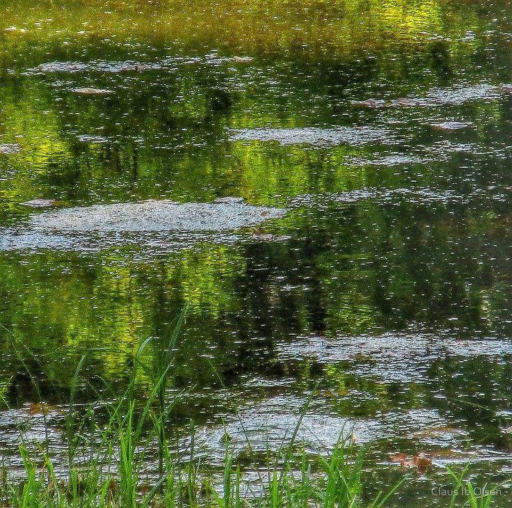 'Monet' by Claus Ib Olsen