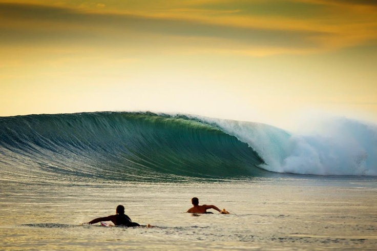 What.a.wave..............yep