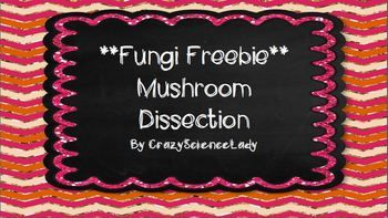 **Fungi Freebie**  Mushroom Dissection for middle school Life Science class!