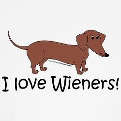 1000 images about weiner dog on pinterest weiner dogs for Painting with a twist conroe
