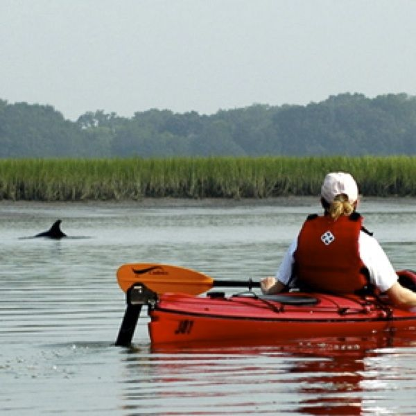 Charters bulls island ferry what to do in charleston for Sea fishing kayak