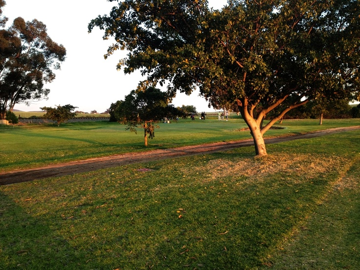 Moorreesburg Golf course - South Africa