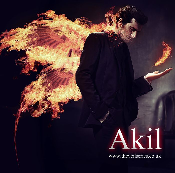 Image result for the veil series akil